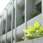 Plants of BOTA
